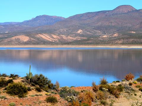 roberta treadway roosevelt lake arizona